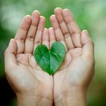 Eco Friendly Leaf in Hand